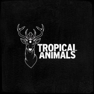Tropical animals a Firenze
